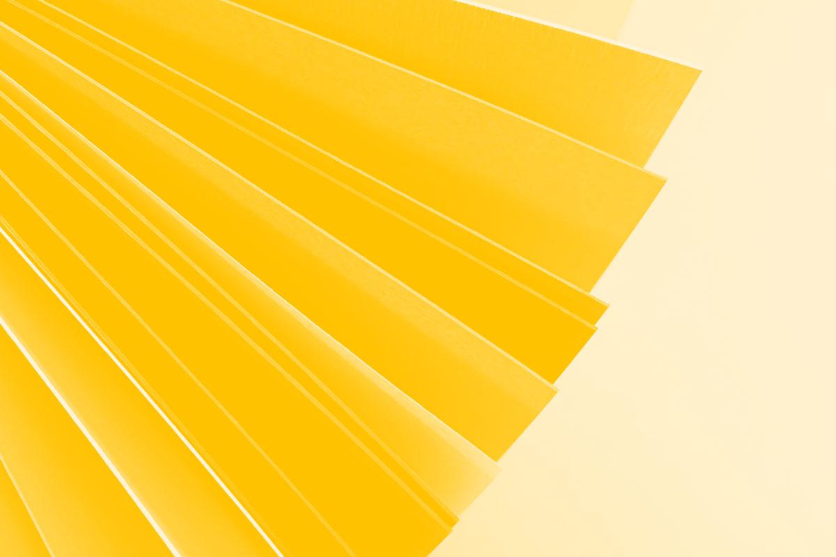 Fotografia de uma pasta de cartão com folhas de papel alusiva ao conceito de portfolio